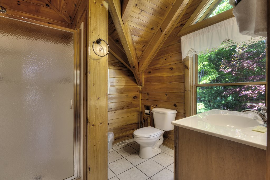 Photo of a Sevierville Cabin named Eagle's View #356 - This is the thirty-fifth photo in the set.