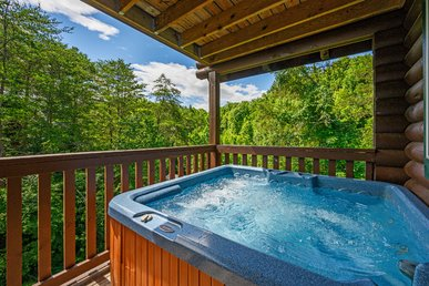 Free Attractions! Wilderness Theater & Lodge, Hot Tub, Game Room, Jacuzzi