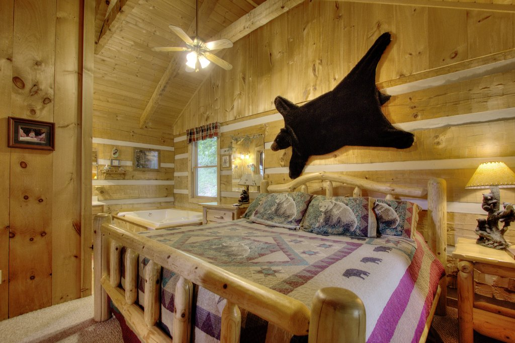 Photo of a Sevierville Cabin named Apple Bear View #116 - This is the fourth photo in the set.