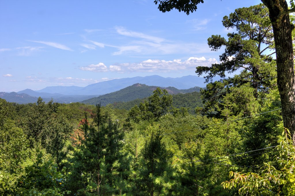 Photo of a Sevierville Cabin named Apple Bear View #116 - This is the twenty-ninth photo in the set.