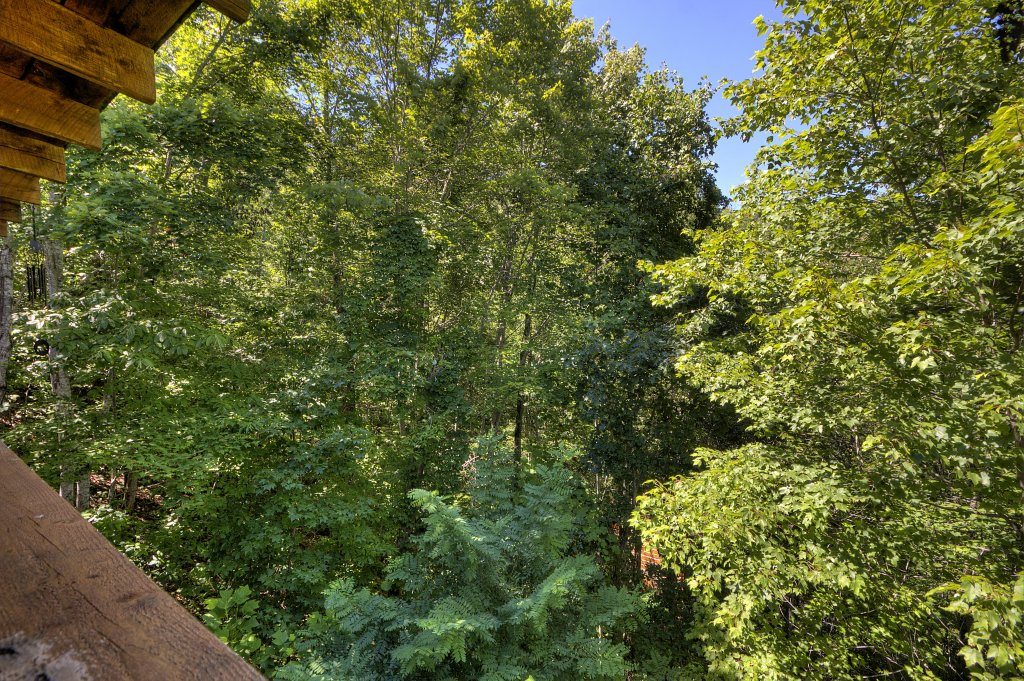 Photo of a Sevierville Cabin named Apple Bear View #116 - This is the thirteenth photo in the set.