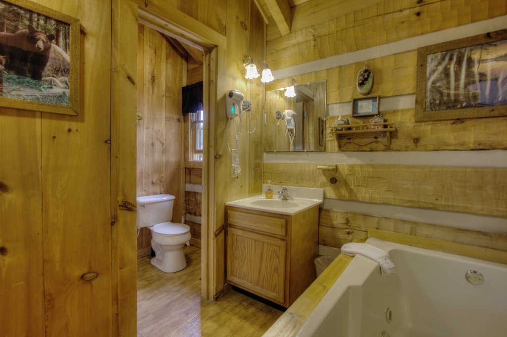 Photo of a Sevierville Cabin named Apple Bear View #116 - This is the thirty-eighth photo in the set.