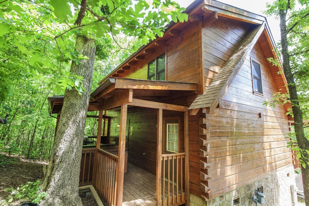 Photo of a Pigeon Forge Cabin named  Bear Naked - This is the twenty-eighth photo in the set.