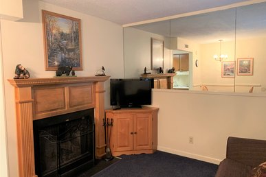 One Bedroom Condo In The Heart Of Gatlinburg (unit 102)