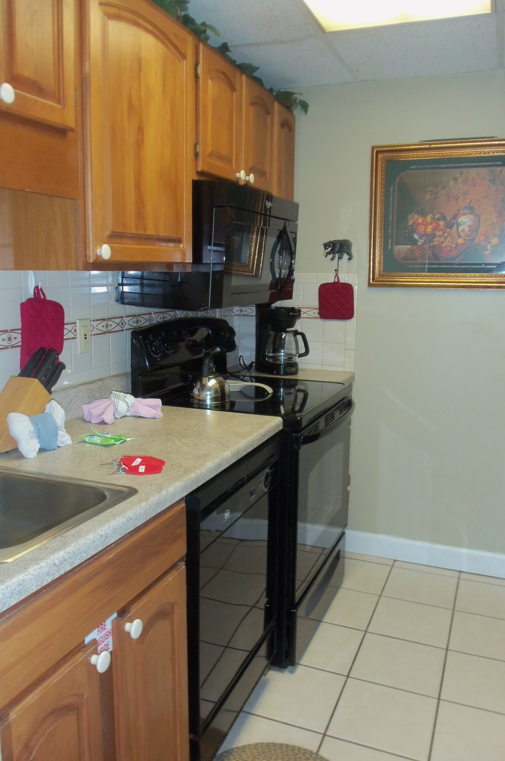 Photo of a Gatlinburg Condo named Gatlinburg Chateau 201 - This is the seventh photo in the set.