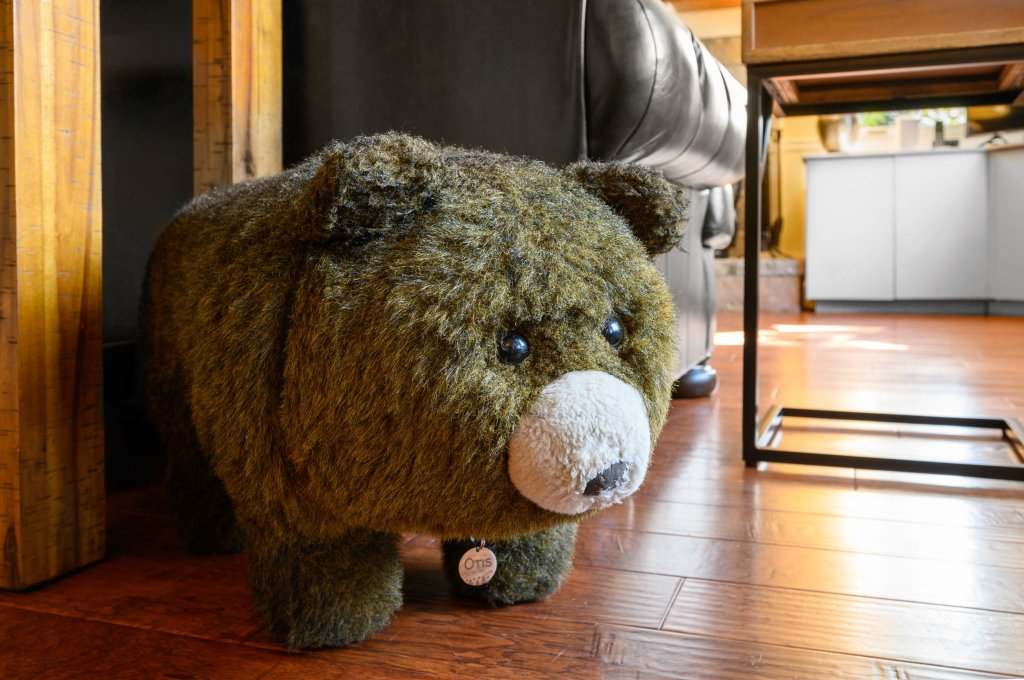 Photo of a Gatlinburg Cabin named Find Your Bear-ings - This is the forty-fifth photo in the set.