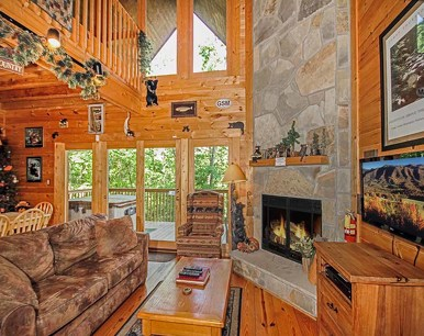 Bear Country Cabin,  2 Bedrooms, Private, Foosball, Hot Tub,  Sleeps 6